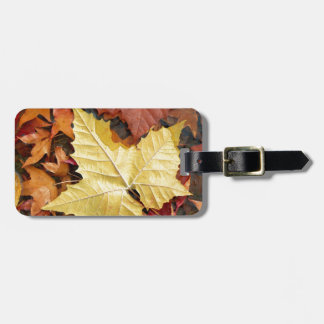 Fall Leaves Tag For Bags