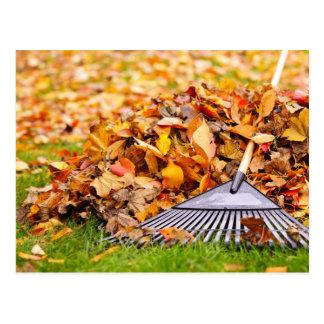 Fall Leaves With Rake Postcard