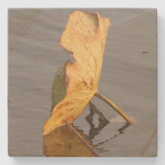 Fall Lily Pads Stone Coaster