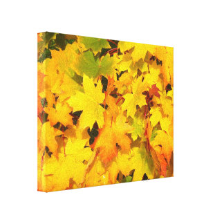 Fall Maple Leaves with Autumn Colors Canvas Print