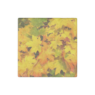 Fall Maple Leaves with Autumn Colors Stone Magnet