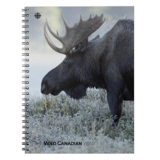 Fall - Moose Spiral Notebook