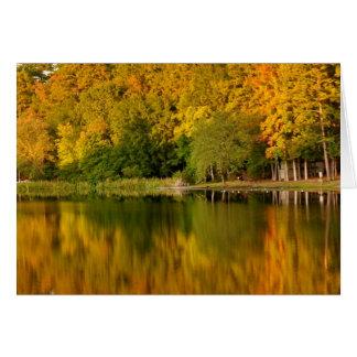 Fall Notecard - Blank Inside