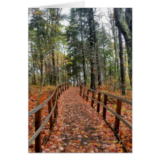 Fall path in woods card
