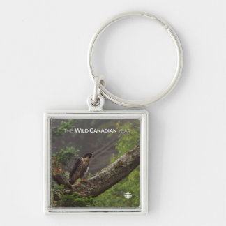 Fall - Peregrine Falcon Key Ring
