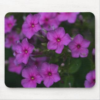 Fall Phlox Pink Wildflower Floral Mousepad