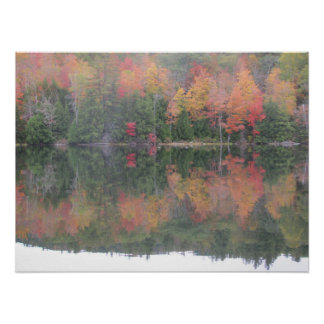 Fall pond reflections poster