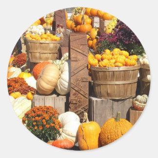 Fall Pumpkins Glossy Stickers