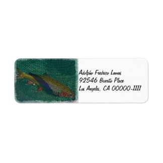Fall River Rainbow Address Label