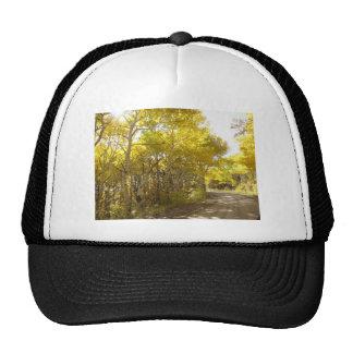 fall road cap