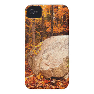FALL ROCKS! Case-Mate iPhone 4 CASES