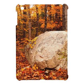 FALL ROCKS! COVER FOR THE iPad MINI