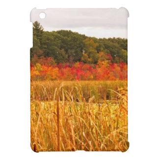 Fall Scene at Great Meadows Case For The iPad Mini