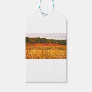Fall Scene at Great Meadows Gift Tags
