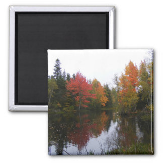 Fall Scenery Square Magnet