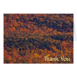 Fall Splendor Thank You Card