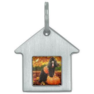 Fall Thanksgiving - Gidget - Poodle Pet Name Tag