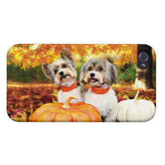 Fall Thanksgiving - Max & Leo - Yorkies iPhone 4/4S Cover