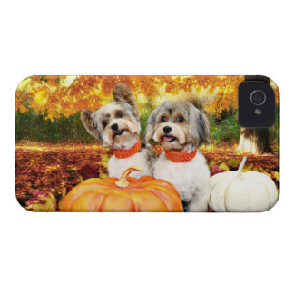 Fall Thanksgiving - Max & Leo - Yorkies iPhone 4 Case-Mate Case