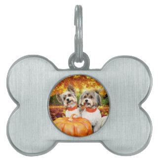 Fall Thanksgiving - Max & Leo - Yorkies Pet ID Tag