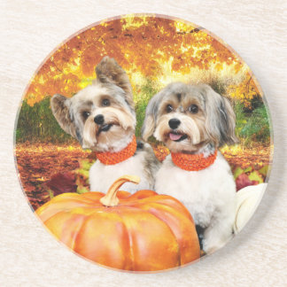 Fall Thanksgiving - Max & Leo - Yorkies Sandstone Coaster