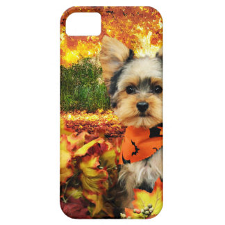 Fall Thanksgiving - Max - Yorkie Barely There iPhone 5 Case
