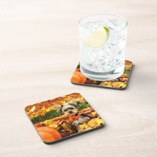 Fall Thanksgiving - Max - Yorkie Beverage Coasters