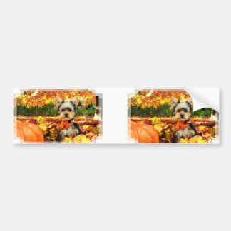 Fall Thanksgiving - Max - Yorkie Bumper Sticker