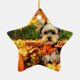 Fall Thanksgiving - Max - Yorkie Ceramic Star Decoration