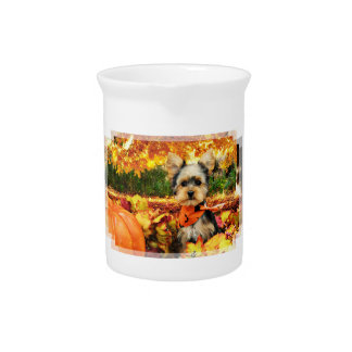 Fall Thanksgiving - Max - Yorkie Pitcher