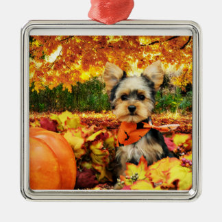 Fall Thanksgiving - Max - Yorkie Silver-Colored Square Decoration
