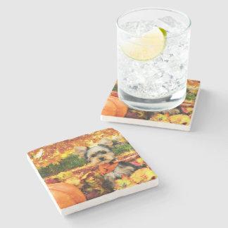 Fall Thanksgiving - Max - Yorkie Stone Beverage Coaster