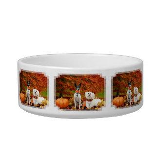 Fall Thanksgiving - Monty Fox Terrier & Milly Malt Bowl