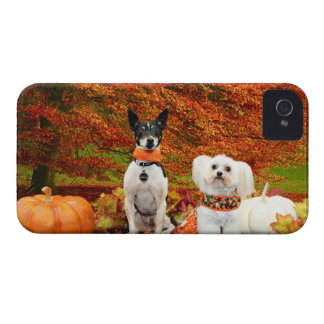 Fall Thanksgiving - Monty Fox Terrier & Milly Malt iPhone 4 Cover