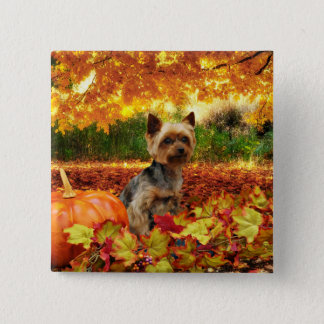 Fall Thanksgiving - Tucker - Yorkie 15 Cm Square Badge