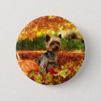 Fall Thanksgiving - Tucker - Yorkie 6 Cm Round Badge