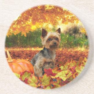 Fall Thanksgiving - Tucker - Yorkie Coasters