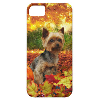 Fall Thanksgiving - Tucker - Yorkie iPhone 5 Cover