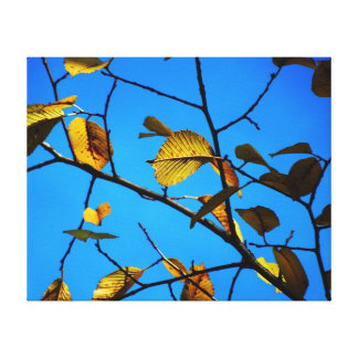 Fall-Themed Canvas Print - Yellow Leaves & Sky
