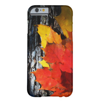 Fall-Themed Case - Maple Leaves