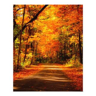 fall trail photo