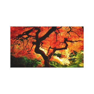 Fall Tree Canvas