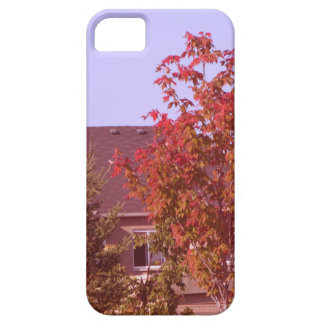 FALL Tree Oakville Ontario Gifts Shirts iPhone 5 Cases