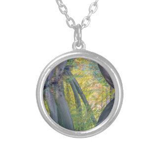 Fall tree trunks with reflection in dutch forest silver plated necklace