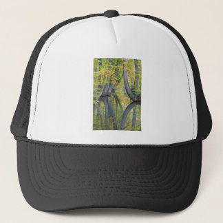 Fall tree trunks with reflection in forest water trucker hat