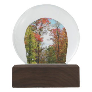 Fall Trees and Blue Sky Autumn Nature Photography Snow Globe