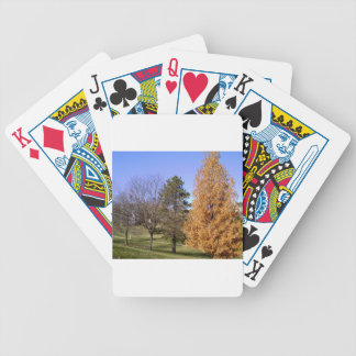 Fall Trees Bicycle Playing Cards