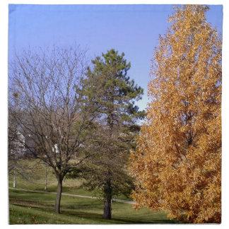 Fall Trees Napkin