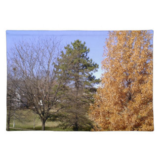 Fall Trees Placemat