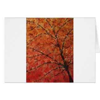 FALL TREES TRIPTYCH (RIGHT PANEL) CARD